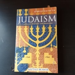 A BRIEF GUIDE TO JUDAISM, THEOLOGY, HISTORY AND PRACTICE - NAFTALI BRAWER  (CARTE IN LIMBA ENGLEZA)