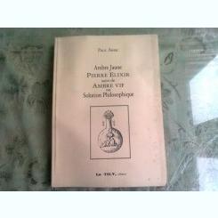 AMBRE JAUNE  PIERRE ELIXIR SUIVI DE AMBRE VIF OU SOLUTION PHILOSOPHIQUE - PAUL ARSIC  (CARTE IN LIMBA FRANCEZA)