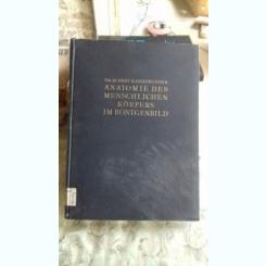 ANATOMIE DES MENSCHLICHEN KÖRPERS IM RÖNTGENBILD - ALBERT HASSELWANDER (ANATOMIA CORPULUI UMAN ÎN X-RAY)