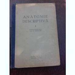 ANATOMIE DESCRIPTIVA - E.REPCIUC  VOL.I