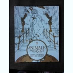 ANIMALE FANTASTICE SI UNDE LE PUTEM GASI, PERSONAJE SI LOCURI MAGICE, CARTE DE COLORAT