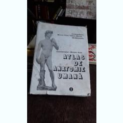 ATLAS DE ANATOMIE UMANA - MIRCEA IFRIM   VOL.1