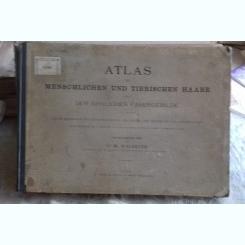 Atlas der menschlichen und tierischen haare - W. Waldeyer  (Atlas. Structura similara a fibrelor de par animal si uman)