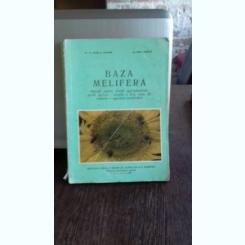 BAZA MELIFERA - ELENA HOCIOTA