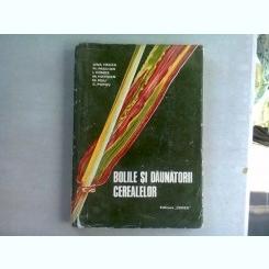 BOLILE SI DAUNATORII CEREALELOR - ANA HULEA
