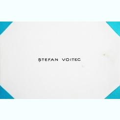 CARTE DE VIZITA STEFAN VOITEC
