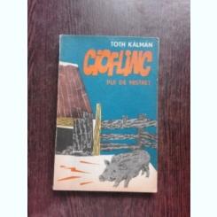 CIOFLINC, PUI DE MISTRET - TOTH KALMAN