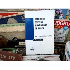 CONFLICTELE COLECTIVE SI INDIVIDUALE DE MUNCA , Monna-Lisa Belu Magdo , 2001