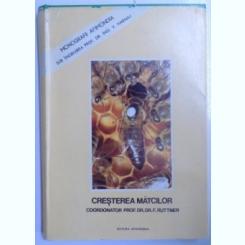 CRESTEREA MATCILOR - BAZE BIOLOGICE SI INDICATII TEHNICE coordonator F. RUTTNER , 1980
