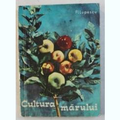CULTURA MARULUI de FL. LUPESCU , 1968