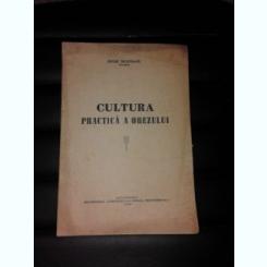 CULTURA PRACTICA A OREZULUI - PETRE MUNTEANU