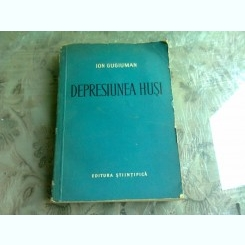 DEPRESIUNEA HUSI - ION GUGIUMAN