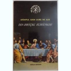 DIN OSPATUL STAPANULUI DE SFANTUL IOAN GURA DE AUR , 1995