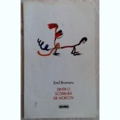DINTR-O SCORBURA DE MORCOV - EMIL BRUMARU