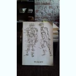 DORU TULCAN. DESEN, SERIGRAFIE, FOTOGRAFIE