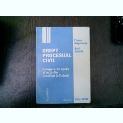 Drept procesual civil - Florea Magureanu, Bazil Oglinda