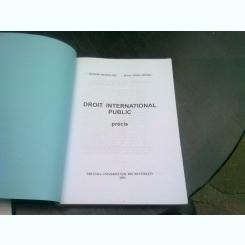 DROIT INTERNATIONAL PUBLIC - TEODOR MELESCANU, IULIA VOINA MOTOC