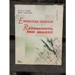 EXPERTIZA GRAFICA SI RATIONAMENTUL PRIN ANALOGIE