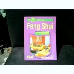 Feng Shui - Alexia Cinzeaca