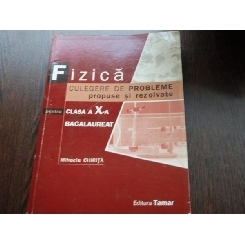 FIZICA CULEGERE DE PROBLEME - MIHAELA CHIRITA