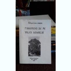 FUMURENII DE PE VALEA MAMULUI - LIVIU I. IONETE