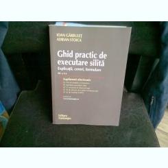 GHID PRACTIC DE EXECUTARE SILITA - IOAN GARBULET