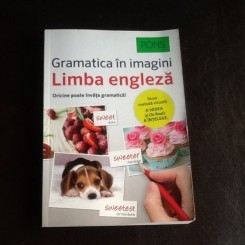 Gramatica in imagini a limbii engleza - Brian Melican