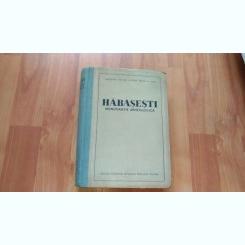 HABASESTI-MONOGRAFIE ARHEOLOGICA-