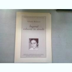INGERUL COBORAT IN STRADA - IOLANDA MALAMEN