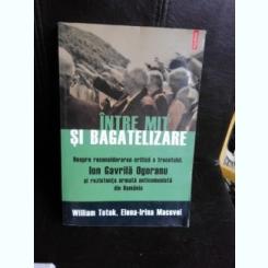 Intre mit si bagatelizare. Despre reconsiderarea critica a trecutului, Ion Gavrila Ogoranul si rezistenta armata anticomunista din Romania - William Totok