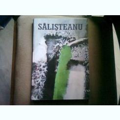 ION SALISTEANU (ALBUM ARTA)