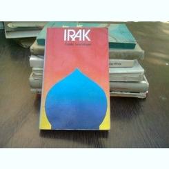 Irak guide touristique - Iconnu