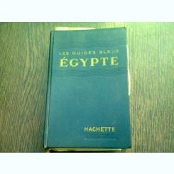 LES GUIDES BLEUS EGYPTE
