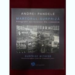 MARTORUL SURPRIZA - ANDREI PANDELE  (FOTOGRAFII NECENZURATE DIN COMUNISM)