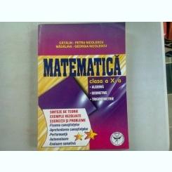 MATEMATICA CLASA A X-A. ALGEBRA, GEOMETRIE, TRIGONOMETRIE - CATALIN PETRU NICOLESCU