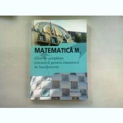 MATEMATICA M1. GHID DE PREGATIRE INTENSIVA PENTRU EXAMENUL DE BACALAUREAT
