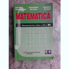 MATEMATICA, MANUAL PENTRU CLASA XII-A M - DORIN ANDRICA
