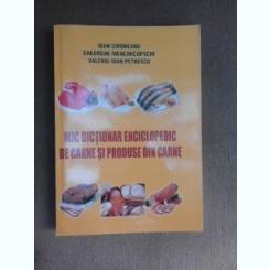 Mic dictionar enciclopedic de carne si produse din carne - Ion Cironeanu