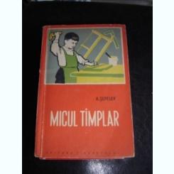 MICUL TAMPLAR - A. SEPELEV