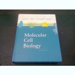 MOLECULAR CELL BIOLOGY  (CARTE IN LIMBA ENGLEZA)