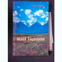 MUNTII FAGARASULUI - ANDREI BELEAUA