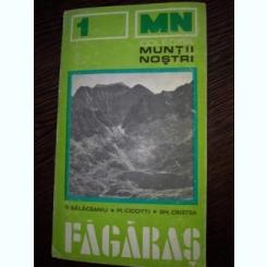 MUNTII NOSTRI NR. 1 : MUNTII FAGARAS V.BALACEANU M.CICOTI EM.CRISTEA