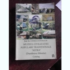 MUZEUL CIVILIZATIEI POPULARE TRADITIONALE ASTRA (DUMBRAVA SIBIULUI) - CORNELIU IOAN BUCUR