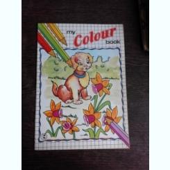MY COLOR BOOK NR.12, CARTE DE COLORAT