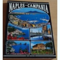 NAPLES AND CAMPANIA - PRO.GRA.MS SRL USMATE