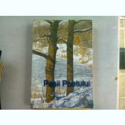 PASII POETULUI-GELLU DORIAN- EMIL IORDACHE