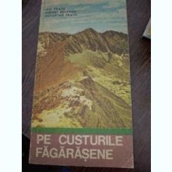 PE CUSTURILE FAGARASENE -  ILIE FRATU