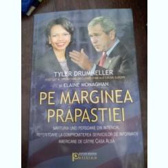 PE MARGINEA PRAPASTIEI - TYLER DRUMHELLER