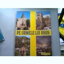 PE URMELE LUI IISUS - PARINTELE GODFREY