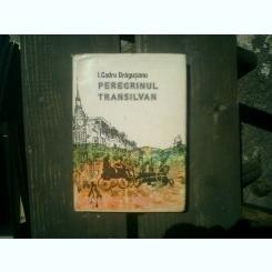 Peregrinul transilvan - I. Codru Dragusanu